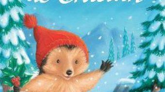 Cartea Aventura de Craciun – M. Christina Butler, Tina Macnaughton (download, pret, reducere)