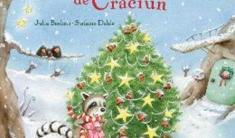 Cartea Dorinta de Craciun – Julia Boehme, Stefanie Dahle (download, pret, reducere)