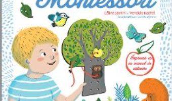 Cartea Jocul meu de indemanare Montessori – Celine Santini, Vendula Kachel (download, pret, reducere)