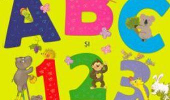 Cartea Bebe invata. ABC si 123. Litere si cifre (download, pret, reducere)