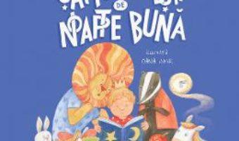 Cartea Sapte povesti de noapte buna – Dana Nalbaru, Oana Ispir (download, pret, reducere)