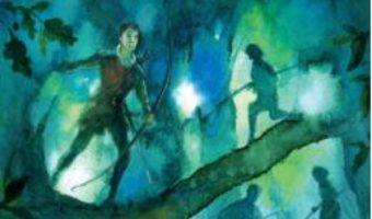 Cartea Robin Hood – Rob Lloyd Jones (download, pret, reducere)