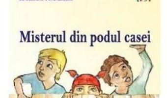 Cartea Misterul din podul casei – Ana Maria Stefan, Sara Alexandra Gharazeddine (download, pret, reducere)