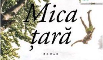 Cartea Mica tara – Gael Faye (download, pret, reducere)