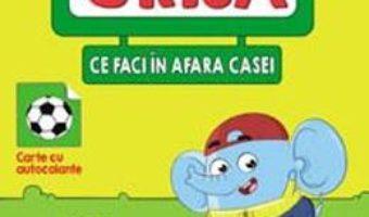 Cartea Ai grija ce faci in afara casei (download, pret, reducere)