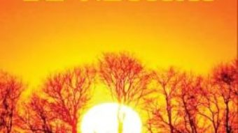 Cartea Vremuri de neuitat – Laurentiu Stancu (download, pret, reducere)