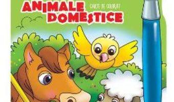 Cartea Animale domestice – Carte de colorat (culori fermecate) (download, pret, reducere)