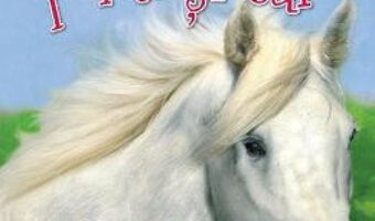 Cartea Povesti cu ponei si cai (download, pret, reducere)