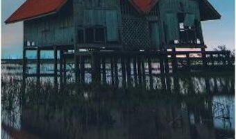 Cartea Evadarea din mlastina – Karen Dionne (download, pret, reducere)