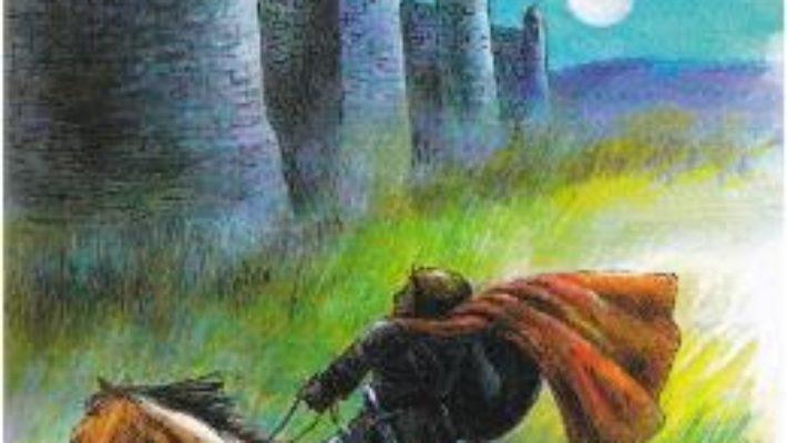 Cartea Muma lui Stefan cel Mare – Dimitrie Bolintineanu (download, pret, reducere)