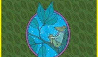 Cartea Insula lui Abel – William Steig (download, pret, reducere)