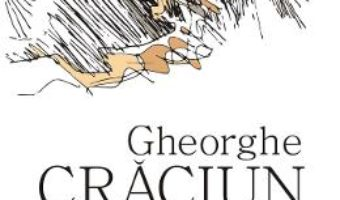 Cartea Aisbergul poeziei moderne – Gheorghe Craciun (download, pret, reducere)