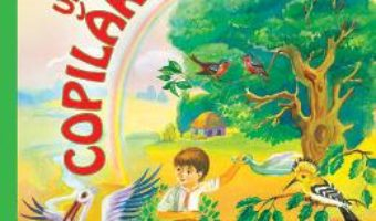 Cartea Unde esti, copilarie? – Mihai Eminescu (download, pret, reducere)