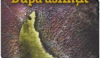 Cartea Dupa asfintit – Alexandra Bracken (download, pret, reducere)