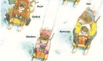 Cartea O zi de iarna cu familia Soricel – Kazuo Iwamura (download, pret, reducere)