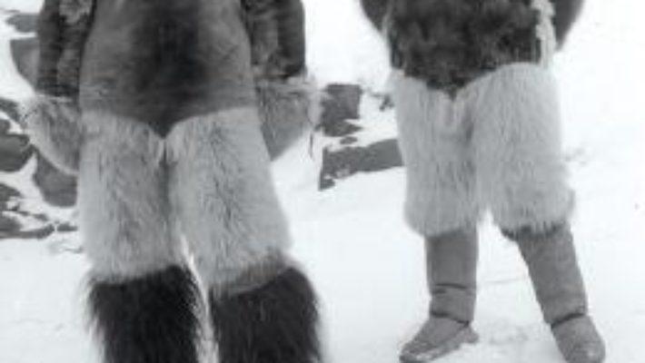 Cartea Aventura arctica – Peter Freuchen (download, pret, reducere)