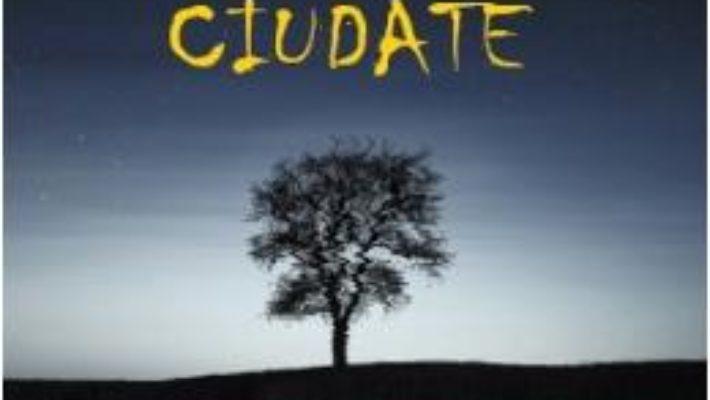 Cartea 70 de poezii ciudate – Ciprian Vestemean (download, pret, reducere)