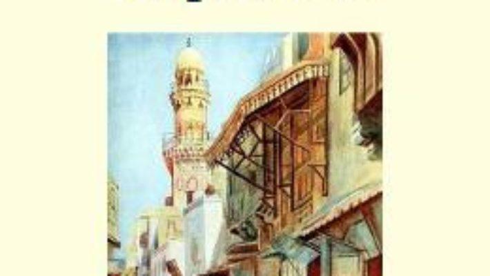 Cartea Copilul rob – Felicia Truffier (download, pret, reducere)