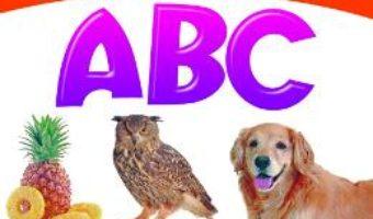Cartea Primele notiuni: ABC (download, pret, reducere)