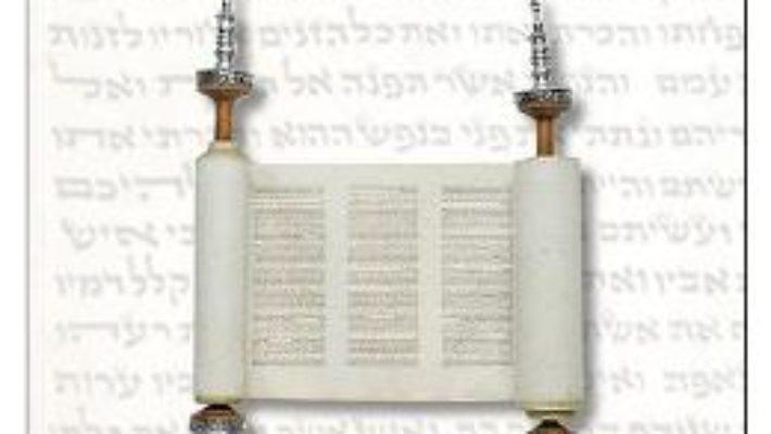 Cartea Torah evreului si a crestinului – Florin Ritco (download, pret, reducere)