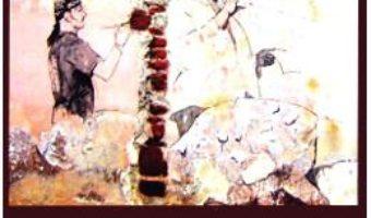 Cartea Cu alte cuvinte – Andrei Gazsi (download, pret, reducere)