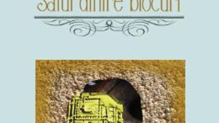 Cartea Satul dintre blocuri – Marian Drumur (download, pret, reducere)