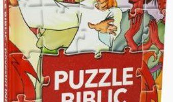 Cartea Puzzle biblic: Povestiri indragite (download, pret, reducere)