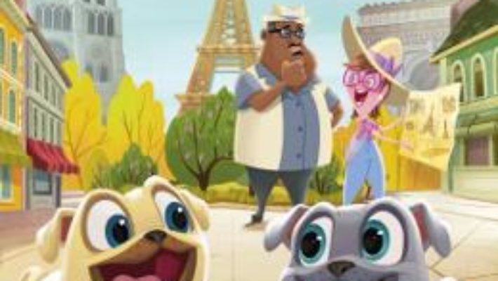 Cartea Disney Prietenii catelusi – Aventuri cu Bingo si Rolly (download, pret, reducere)