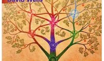 Cartea Invata cum sa intelegi Cabala in 21 de zile – David Wells (download, pret, reducere)