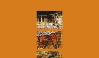 Cartea Batranii ticalosi – Kingsley Amis (download, pret, reducere)