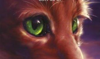 Cartea Pisicile Razboinice. Vol. 9: Zori de zi – Erin Hunter (download, pret, reducere)