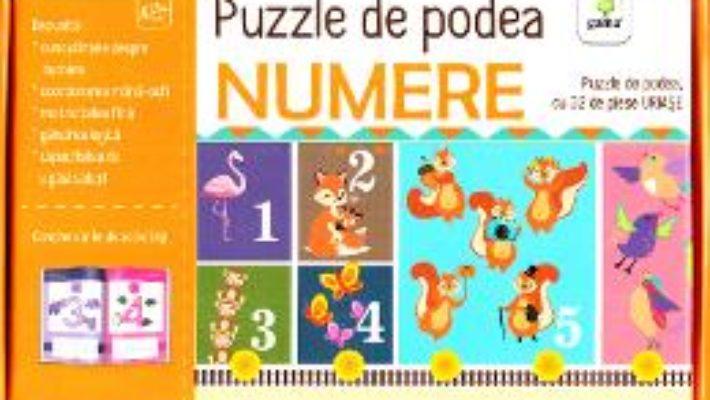 Cartea Puzzle de podea: Numere (download, pret, reducere)
