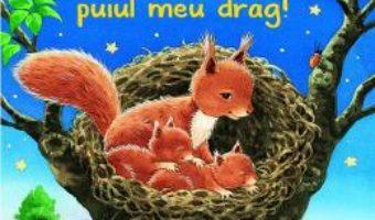Cartea Noapte buna, puiul meu drag! – Nicole Buker (download, pret, reducere)