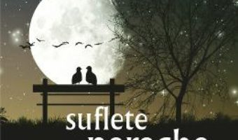 Cartea Suflete pereche – Cecelia Ahern (download, pret, reducere)