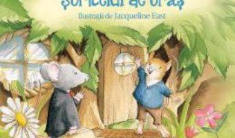 Cartea Soricelul de tara si soricelul de oras – Jacqueline East (download, pret, reducere)