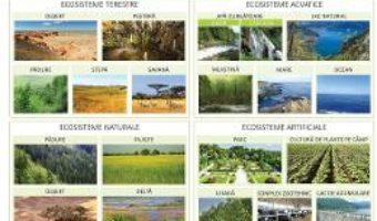 Cartea Plansa tipuri de ecosisteme – Florica Alexandrescu (download, pret, reducere)