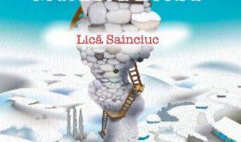 Cartea Moara de frig – Dan Coman, Lica Sainciuc (download, pret, reducere)