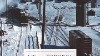 Cartea Capatul drumului – Liliana Corobca (download, pret, reducere)