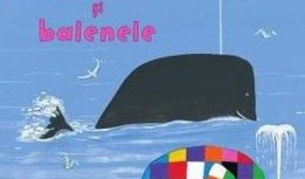 Cartea Elmer si balenele – Davis McKee (download, pret, reducere)