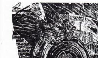 Cartea 11 elegii – Nichita Stanescu (download, pret, reducere)