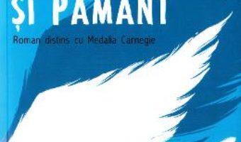 Cartea Intre cer si pamant – David Almond (download, pret, reducere)