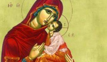 Cartea Viata Marilor Sfinti Ortodocsi – Roxana Maria Teodorine (download, pret, reducere)