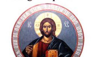 Cartea Toboganul patimilor – Gamaliel Sima (download, pret, reducere)