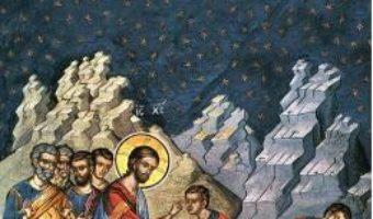Cartea Simt boala ca iubire a lui Hristos – Preot Ioan C. Tesu (download, pret, reducere)