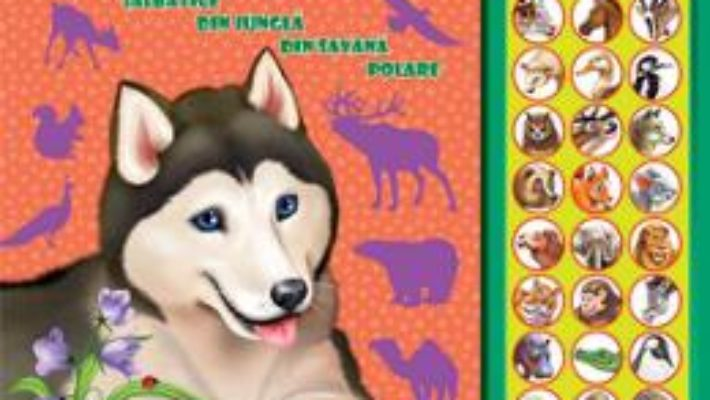 Cartea Carte cu sunete: Animale (romana+engleza) – Inesa Tautu (download, pret, reducere)