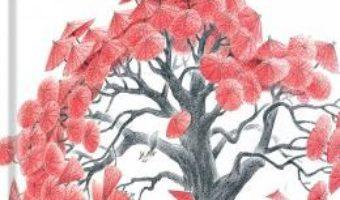 Cartea Umbrela rosie – Bai Bing, Li Hongzhuan (download, pret, reducere)