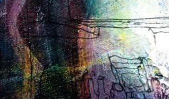 Cartea Raptus la conditia umana – Vasile Popa Homiceanu (download, pret, reducere)