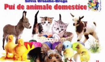 Cartea Pui de animale domestice – Silvia Ursache-Brega (download, pret, reducere)