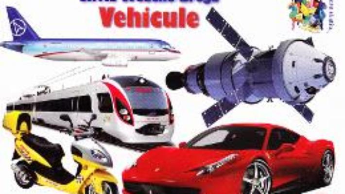 Cartea Vehicule – Silvia Ursache-Brega (download, pret, reducere)