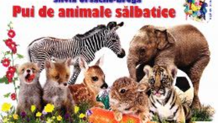Cartea Pui de animale salbatice – Silvia Ursache-Brega (download, pret, reducere)
